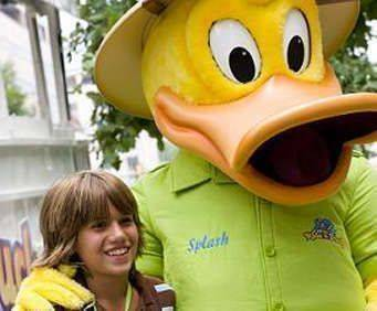 Ride the Ducks Branson, duck