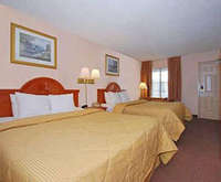 Photo of Comfort Inn Downtown Room