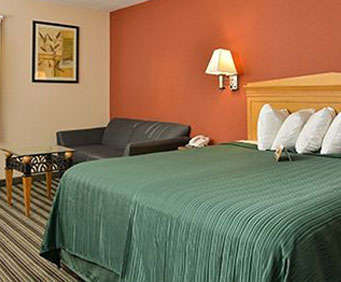 Room Photo for Quality Inn & Suites Centerville