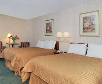 Comfort Inn Central Williamsburg Room Photos