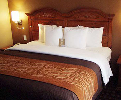 Room Photo for Comfort Inn & Suites Dallas