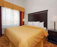 Comfort Suites Dallas Room Photos