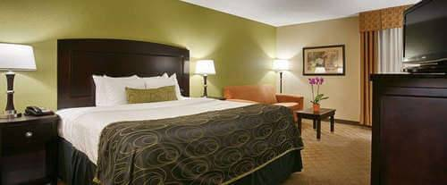 Room Photo for BEST WESTERN PLUS Addison Galleria Hotel