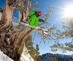 Salt Lake City Brighton Ski Package