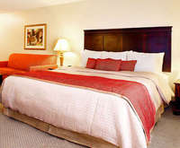 Regency Suites Hotel Dining