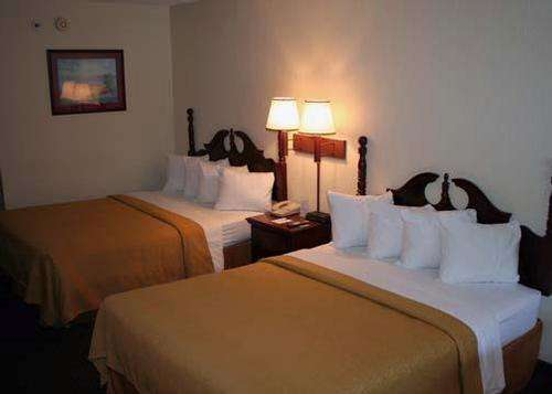 Photo of Quality Inn Saint Augustine Room