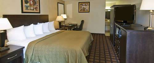 Quality Inn Daytona Beach Room Photos