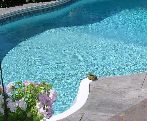 Outdoor Swimming Pool of Best Western Battlefield Inn Oglethorpe