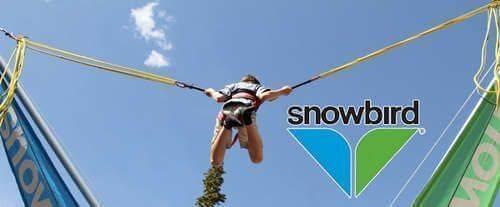 Snowbird Summer Activities - All Day Unlimited Pass, bounce
