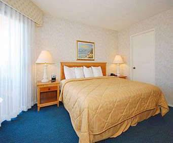 Room Photo for Quality Inn & Suites Hermosa Beach