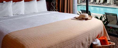 Holiday Inn & Suites Anaheim Room Photos