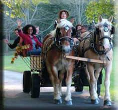 Smoky Mountain Picnic & Romantic Carriage Rides, carriage