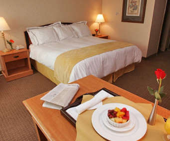 Room Photo for Adoba Hotel Rapid City