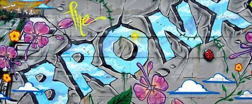 The Bronx Tour - New York, NY, art
