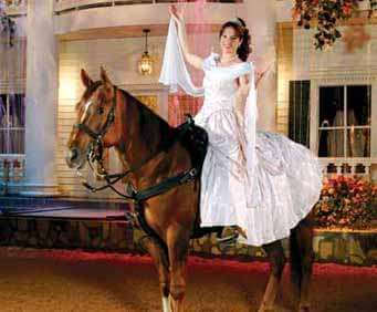 Dixie Stampede Lighted Gown