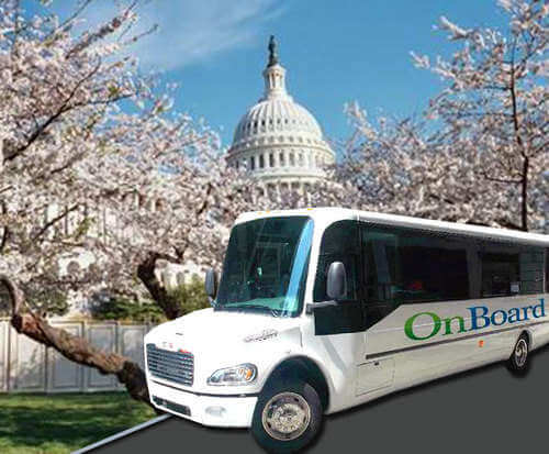 Cherry Blossom Tour, OnBoard Tours