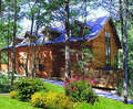 Cabins at Grand Mou...