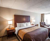 Quality Inn & Suites Orland Park