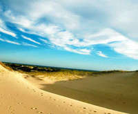 Cape Cod Dune Tour At National...