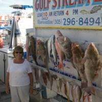 Gulfstream Party Boat Fishing 1/2 Day Trip
