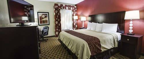 Room Photo for Red Roof Inn Cincinnati North - Mason