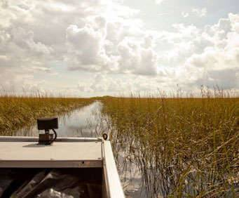 Sawgrass Recreation Park Everglades Airboat Tour, swampboat view