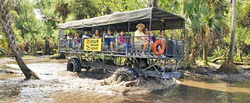 Bille Swamp Safari Twilight Buggy Tour, amphibious