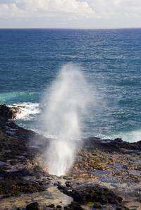 The spray from the spouting horn can shoot as high as 50 feet in the air