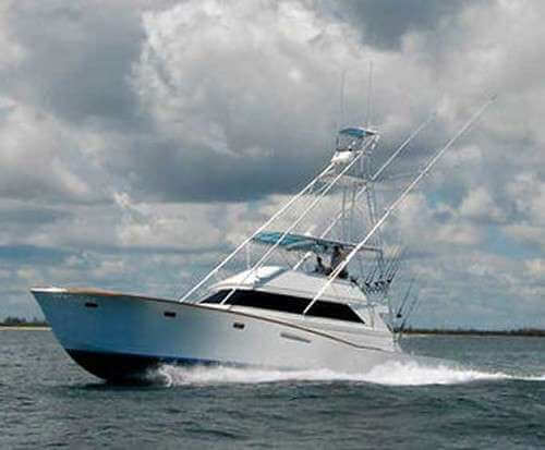 Gulf stream fishing charter in west palm beach florida for Gulf stream fishing