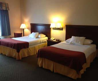 Room Photo for Best Western Tampa