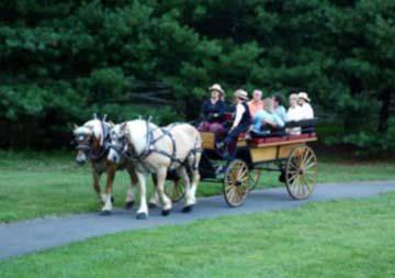 Smoky Mountain Picnic & Romantic Carriage Rides, old fashioned ride
