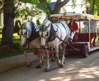 Mackinac Island Carriage Tours...