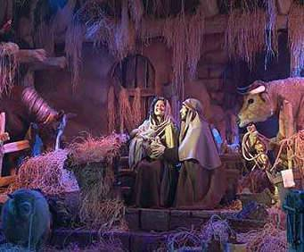 Miracle of Christmas - At the Inn with Animals